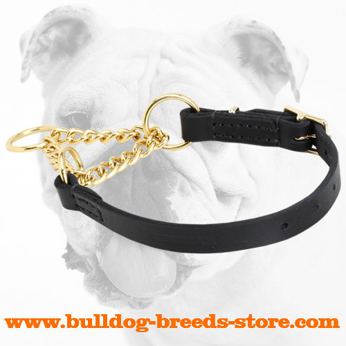 Reliable Leather Martingale Bulldog Collar with a Brass Part