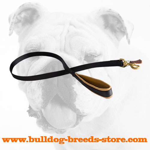 Excellent Nylon Bulldog Leash with Soft Padded Handle
