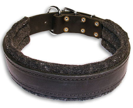 padded leather dog collar for walking,training,travel,tracking your dog
