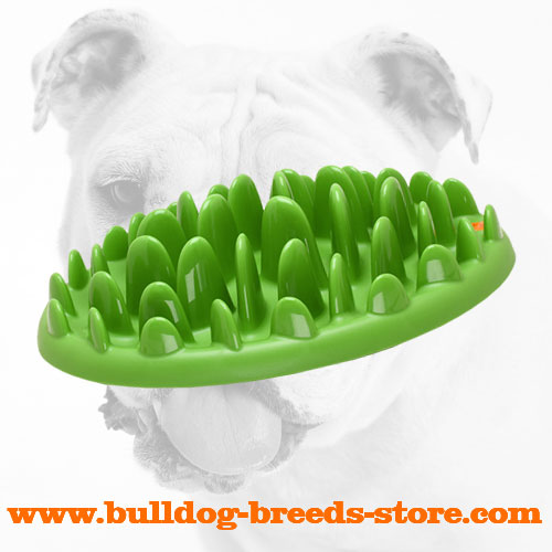 Safe Interactive Bulldog Green Feeder Made of Hard Plastic