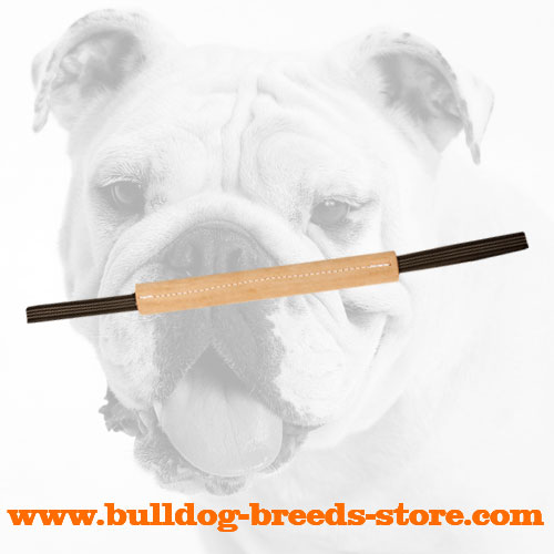 Hard Stout Pocket Leather Bulldog Bite Tug with Handles