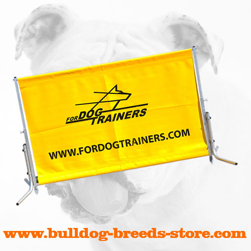 Top Quality Polymer Bulldog Barrier for Training