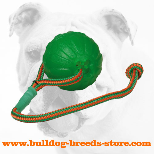 Rubber Chew Bulldog Ball on a String