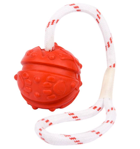 Similar to Everlasting Fun Ball on a Rope for Bulldog