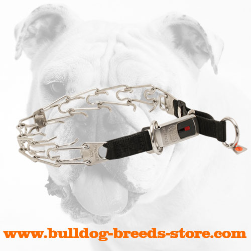 New Stainless Steel Bulldog Pinch Collar for Behavior Correction