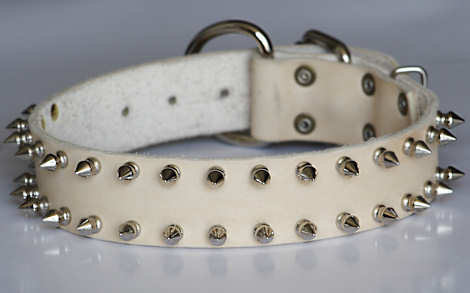 leather spiked   dog collar