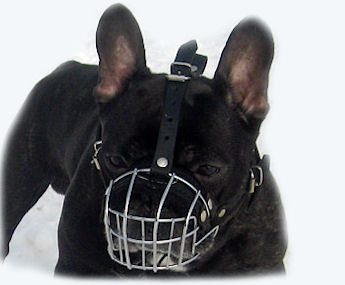 Bouledogue Francais Wire Dog Muzzle-SMALL WIRE MUZZLE