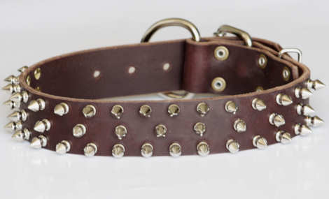 Leather Spiked dog collar for APBT