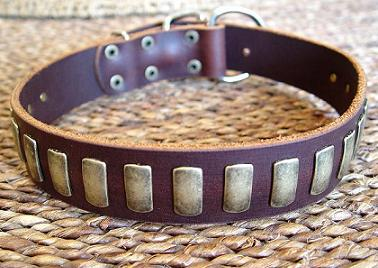 Leather dog collar for American Bulldog