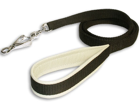Fancy Nylon Dog Leash – 4 foot