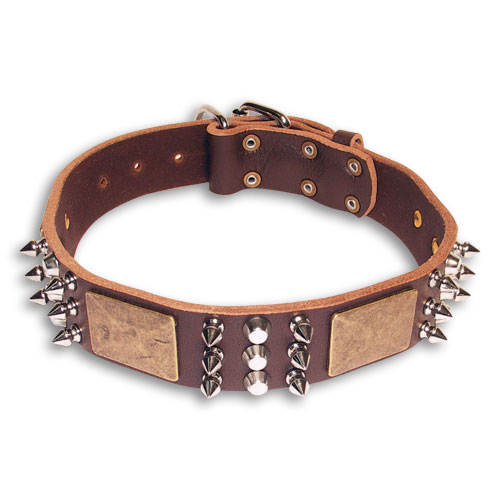 Leather Spiked  Brown collar 25'' for Bulldog /25 inch dog collar-C86