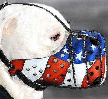 Leather Muzzle for Victorian Bulldog-American Pride Muzzles