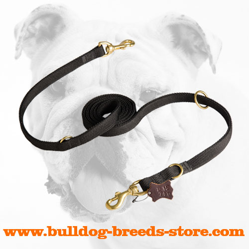 Strong 2 Ply Nylon Bulldog Leash for Patrolling