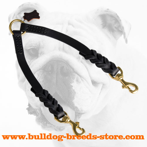High Quality Braided Leather Dog Coupler for Walking Bulldogs