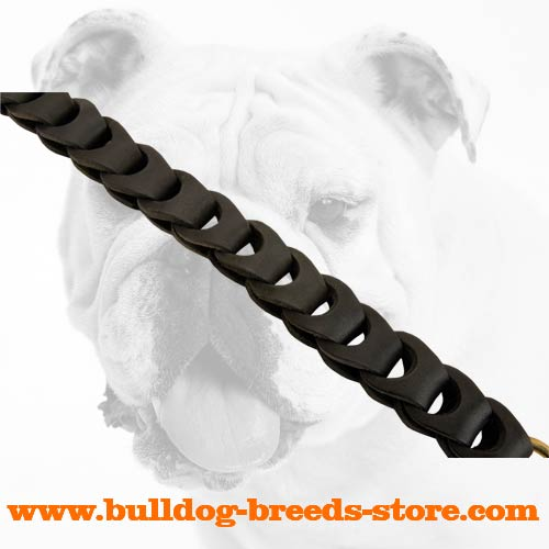 Walking Braided Leather Dog Leash for Bulldog