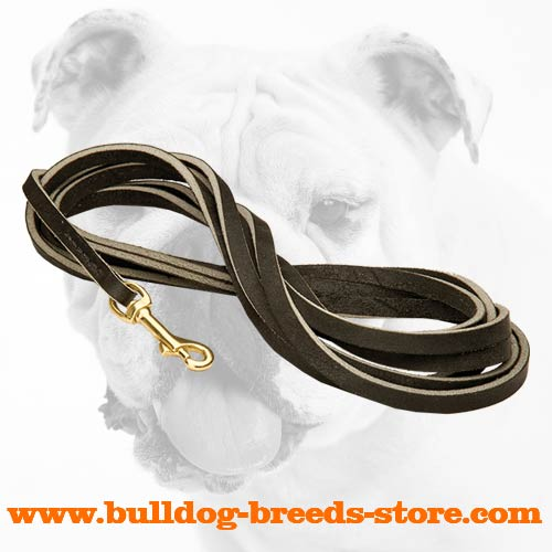Leather Dog Leash for Bulldog Walking