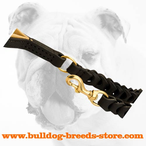 Brass Snap Hook of Braided Leather Bulldog Leash