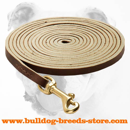 Durable Leather Dog Leash for Bulldog