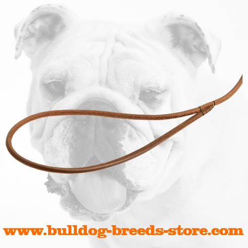 Handle of Best Leather Dog Show Leash for Bulldogs