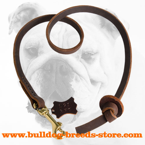 Properly Stitched Training Leather Bulldog Leash