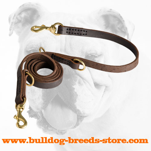 Hand-Stitched Training Leather Dog Leash for Bulldog