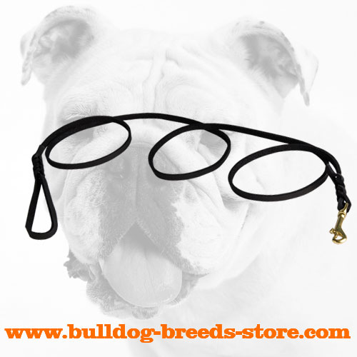 Leather Bulldog Leash with Braids