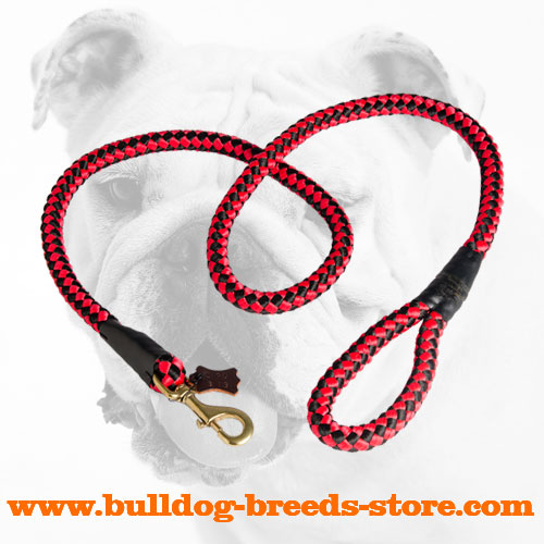 Strong Tracking Thick Cord Nylon Bulldog Leash