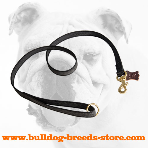 Practical Training Nylon Bulldog Leash