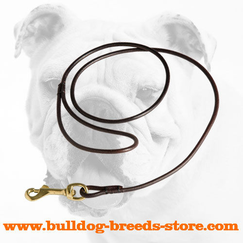 Best Leather Dog Show Leash for Bulldogs