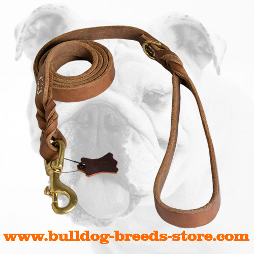 Best Training Leather Dog Leash for Bulldogs