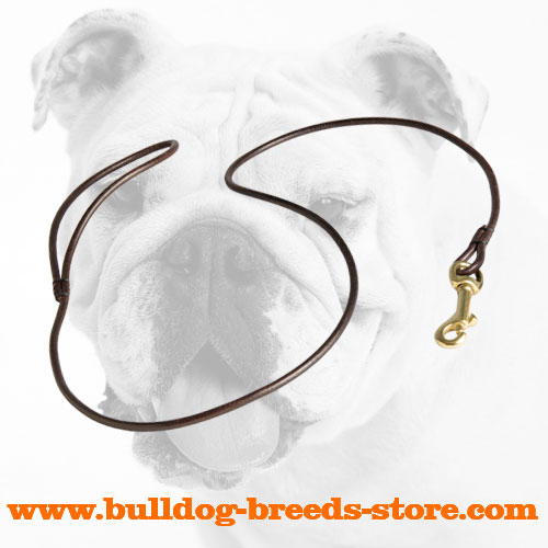 Walking Leather Bulldog Leash