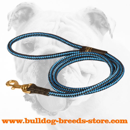 Fashionable and Bright Cord Nylon Bulldog Leash