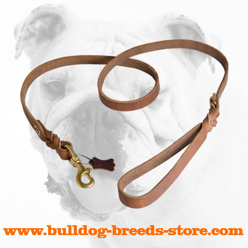 Upgraded Designer Walking Leather Bulldog Leash