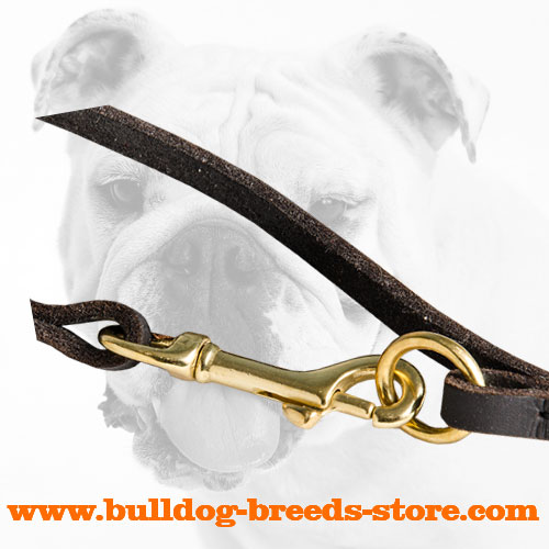 Durable Fittings of Walking Leather Dog Leash for Bulldog