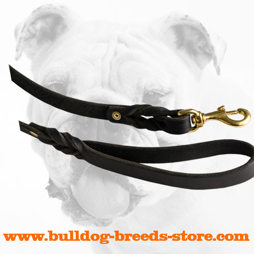 Rust Proof Snap Hook on a Leather Bulldog Leash