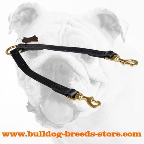 Best Walking Leather Bulldog Coupler