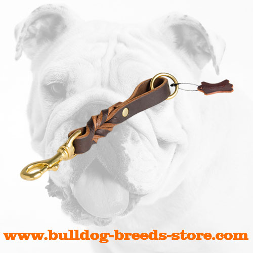 Hand-Made Braided Training Short Leather Bulldog Leash