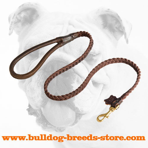 Tracking Braided Leather Dog Leash for Bulldog