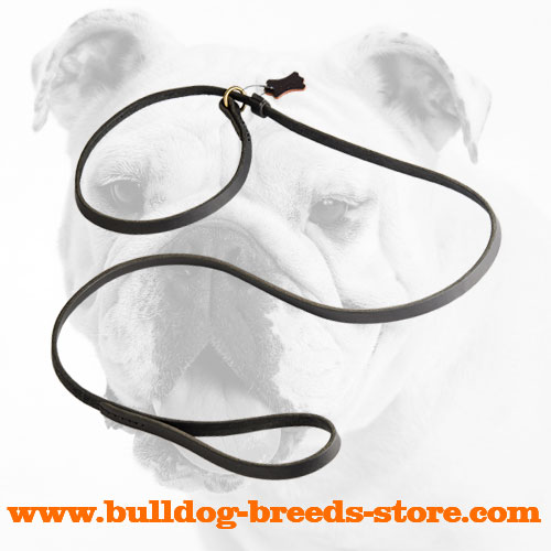 Fast Handling Leather Leash Choke Collar for Bulldogs