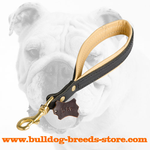 Padded Hand-Stitched Walking Short Leather Bulldog Leash