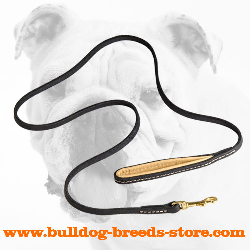 Training Leather Bulldog Leash with Brass Snap Hook
