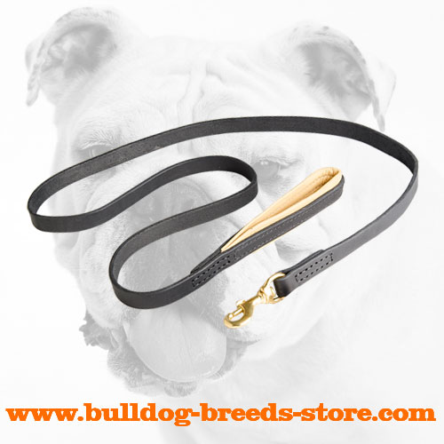Training Leather Bulldog Leash with Soft Handle