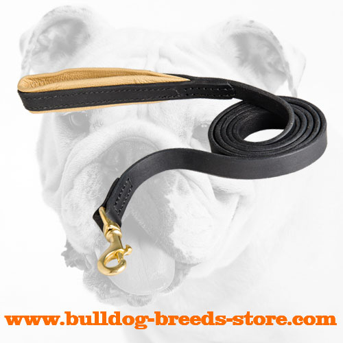 Authentic Leather Bulldog Leash for Walking