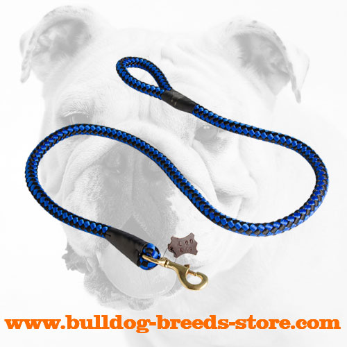 Stylish Walking Cord Nylon Dog Leash for Bulldog