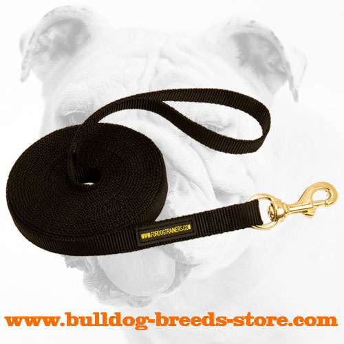 Practical Tracking Nylon Bulldog Leash
