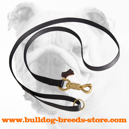 Durable Nylon Dog Leash for Bulldog