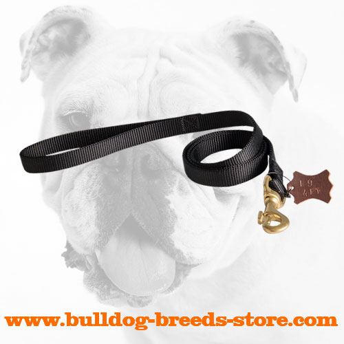 Training Nylon Bulldog Leash with Strong Fittings