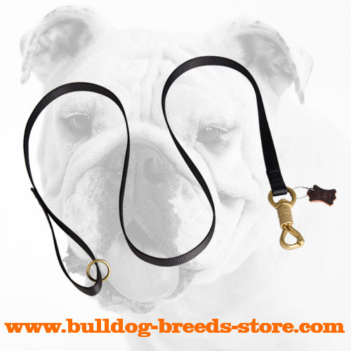 Easy to Use Nylon Bulldog Leash for Walking