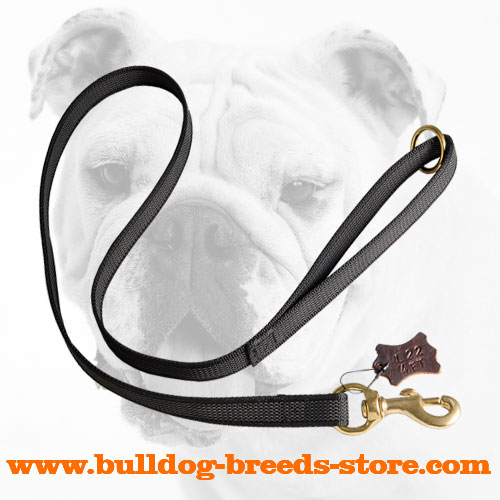 Walking Nylon Bulldog Leash with Rubber Lines