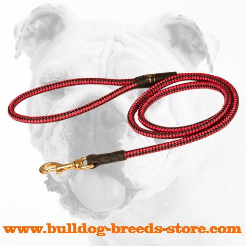 Durable Decorative Nylon Bulldog Leash for Patrolling